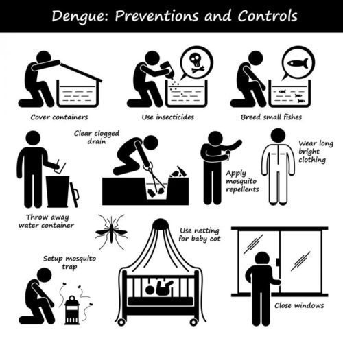 This image has an empty alt attribute; its file name is Dengue-Fever-Sri-Lanka-Prevention.jpg