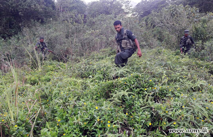Police, SL Army and villagers rescue 9 missing Jaffna university medical faculty students deep inside Muththiyankattu forest reserve