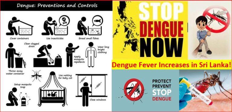 Dengue Fever increasing in Sri Lanka Health Alert issued